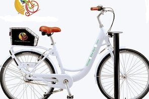 Village Bicycle Rental Free Delivery in The Villages Florida Deluxe Bicycle...