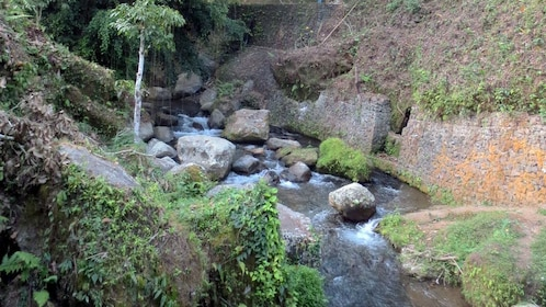 A rocky river running beside temple ruins in Bali
