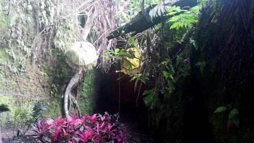 Entrance to a cave with ceremonial umbrellas in Bali