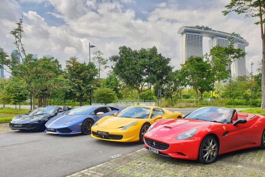 Show item 1 of 10. Singapore F1 Street Circuit Driving Experience