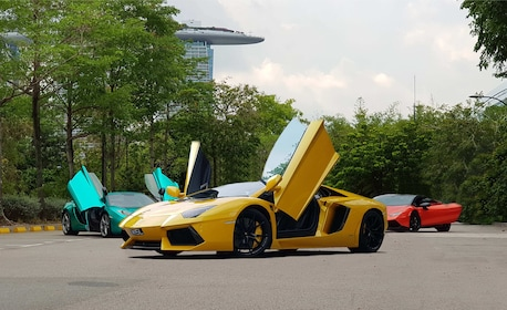 Singapore F1 Street Circuit Driving Experience