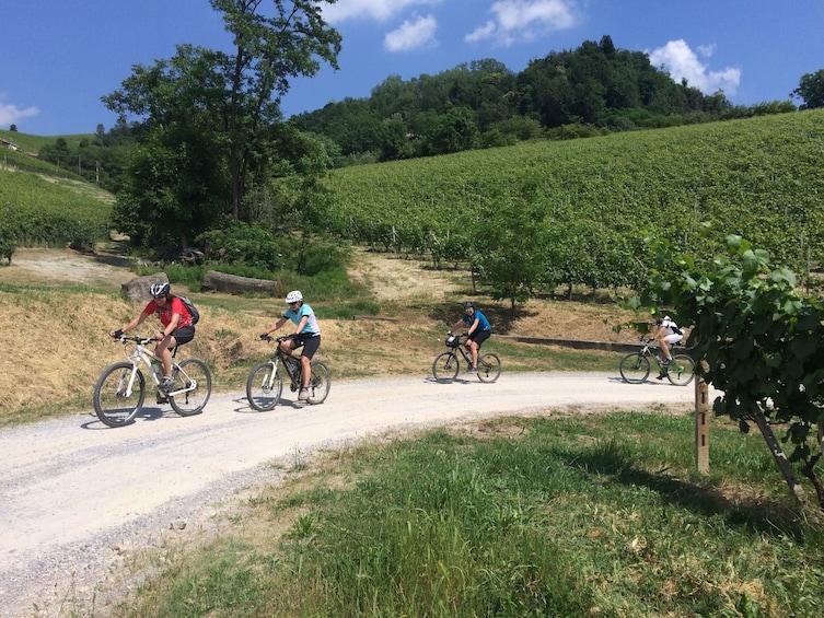 Show item 1 of 7. E-bike tour, Barolo wine tasting and app