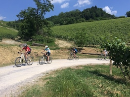 E-bike tour, Barolo wine tasting and app