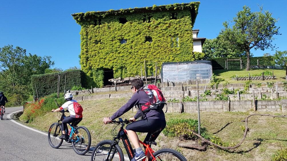 Show item 3 of 7. E-bike tour, Barolo wine tasting and app