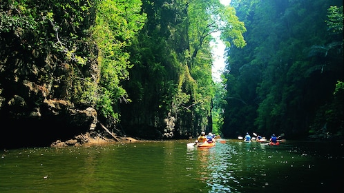 Kayakers paddling past lush green forests in Ao Talen