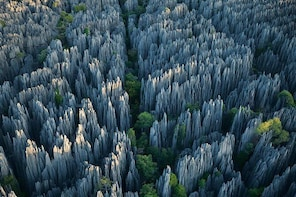 1 Day Stone Forest & Jiuxiang Cave Tour
