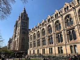 A Day at the Museum - Natural History Museum London
