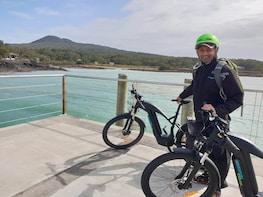 Guided E-bike Tour of Rangitoto Island