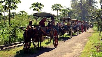 Private Candirejo Village Life Full-Day Tour