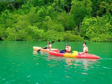 Kubang Badak Mangrove River Join-In Kayaking Tour