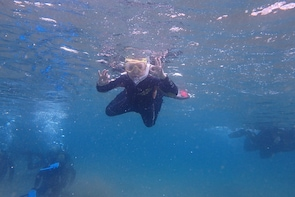 Snorkel guided tour in Lanzarote