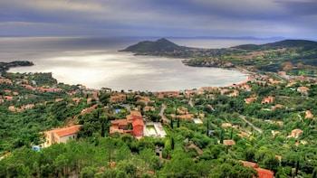 Small-Group Saint-Tropez & Port Grimaud Tour from Monaco