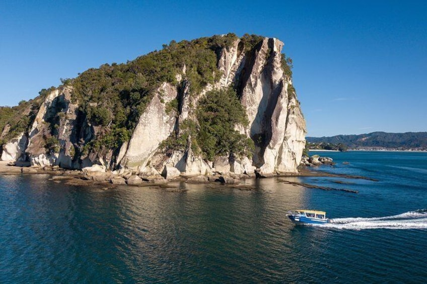 Glass Bottom Boat Whitianga Cathedral Cove Cruise