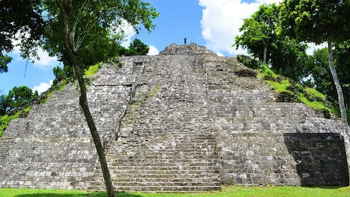 Person on top of temple in ancient Mayan city of Tikal