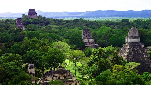 Aerial view of temples of ancient Mayan city of Tikal