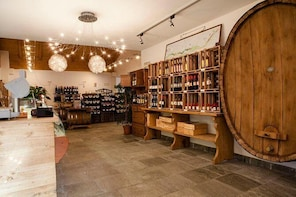 Valtellina: Winery tour and Tasting Experience