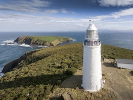 Bruny Island Food, Sightseeing & Exclusive Lighthouse Tour
