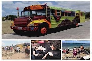 Da Party Bus Beach Break & Island Adventures