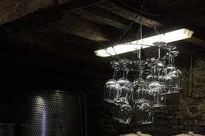 Istria noTourist Wine Tour