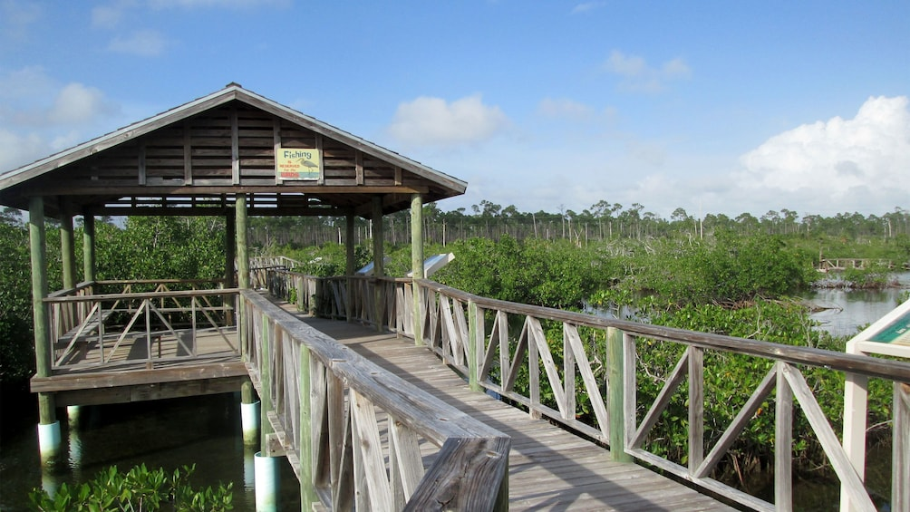 Show item 6 of 6. View of the Lucayan National Park