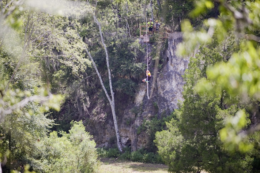 Show item 2 of 3. Treetop Express Zip Line Tour