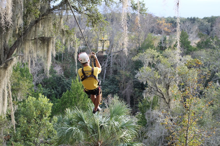 Show item 3 of 3. Treetop Express Zip Line Tour