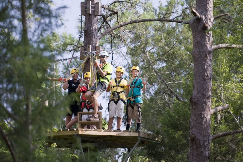 Show item 1 of 3. Treetop Express Zip Line Tour