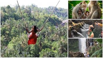Best of Ubud : Monkey forest - swing - Rice terrace - Temple