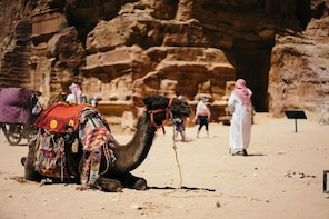 Arabian Horse/Camel Riding ;Private special guided tour