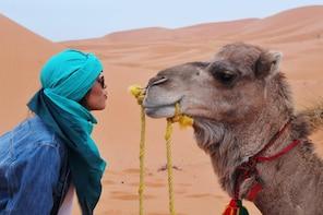 Ride Safari Horse,Quad & Camel Riding ;Combined private tour