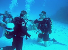 Professional 4-day diving course Include Pick up & Drop off