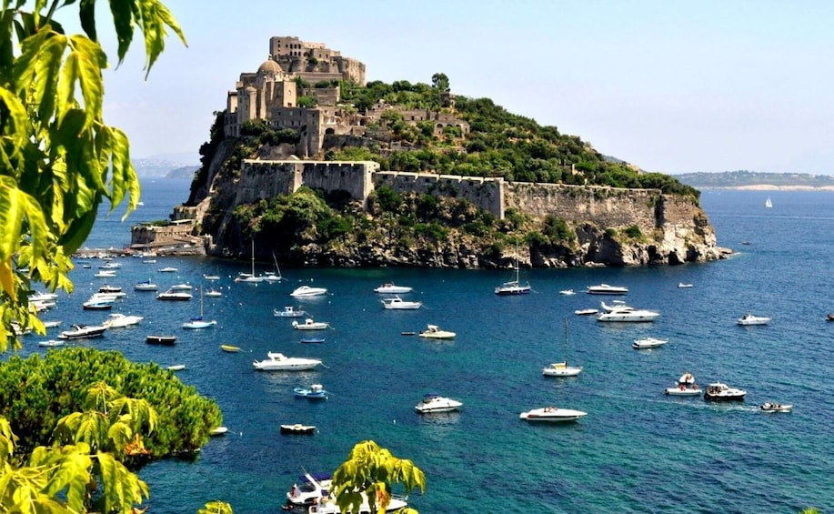 Show item 1 of 1. Discover Ischia and Procida from Sorrento