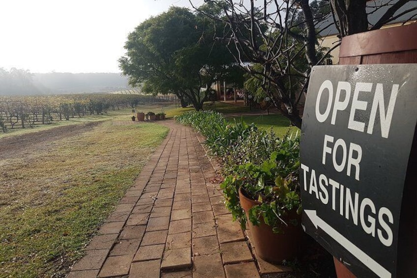 Tintilla Estate: Wine Tasting with a Meat and Cheese Platter