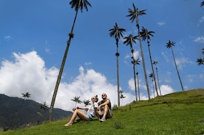 Cocora Valley excursion from Salento