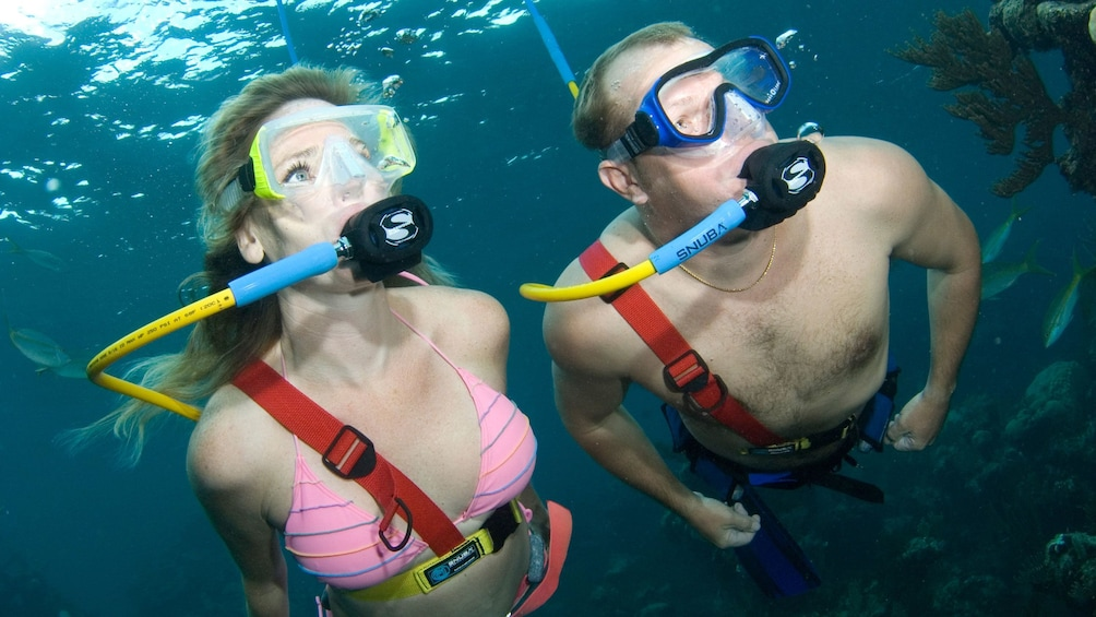 Show item 1 of 8. two divers on SNUBA Adventure in Nassau
