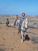 Aruba 1 hr Horseback riding tour for beginners