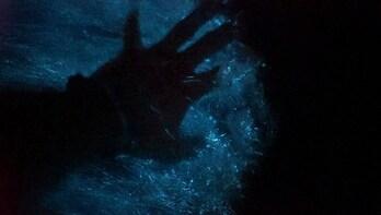 Biolumineszenz-Paddle-Tour