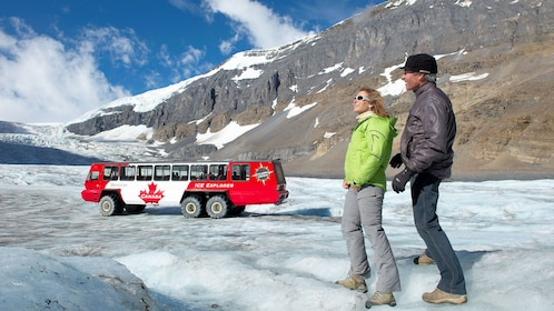 Enjoy amazing views of the Columbian Icefields