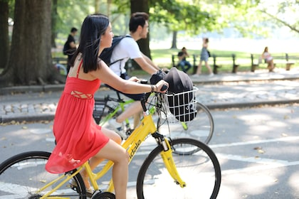 Central Park Bike Rental 2.JPG