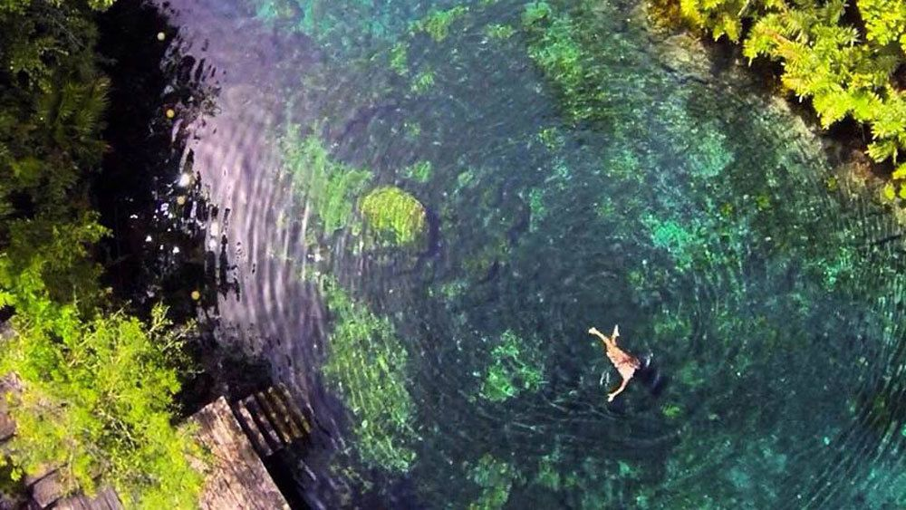 Enjoy a swim in the freshwater cenotes in the Yucatan jungle accessible through a natural trail