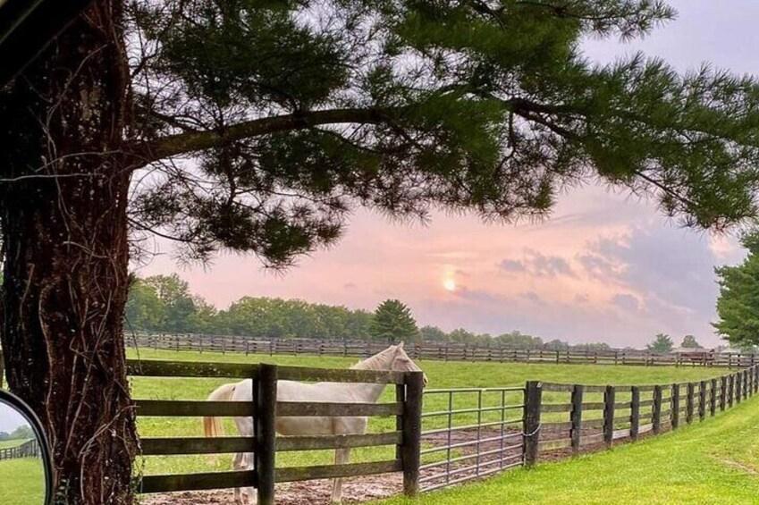 Beautiful Central Kentucky Sunset
