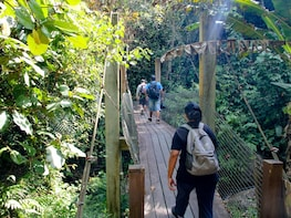 Mount Alab Hiking Adventure from Sabah