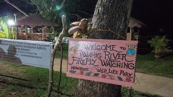 Puerto Princesa Firefly Tour