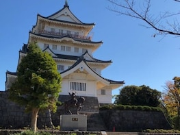 Sightseeing in Chiba Castle and Chiba Shrine
