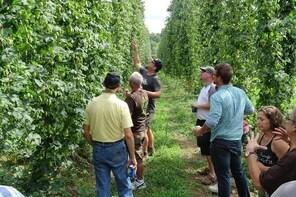 Hop Harvest Beer Tour