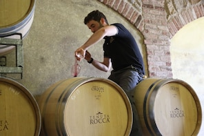 Wine immersion in the heart of the Langhe at Tenuta Rocca
