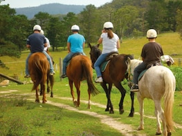 Horse Trekking in Woodland Above Oludeniz