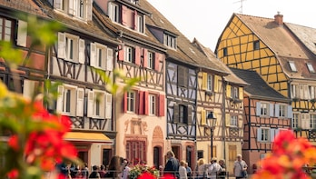 Architectural Walk of Colmar with a Local