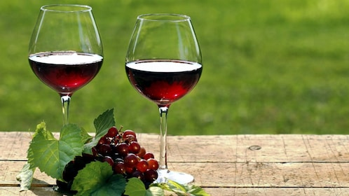 two glasses of red wine in mendoza