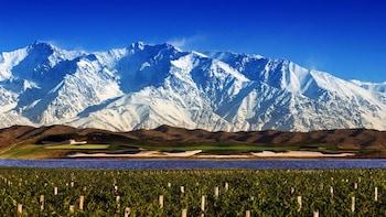 Half-Day Mendoza Wine Country Experiences